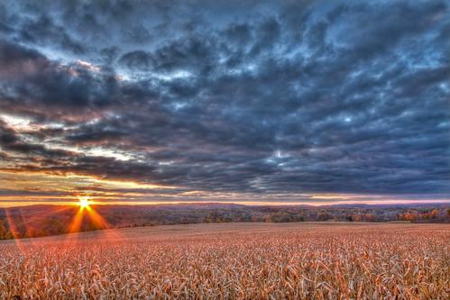 morning fall clouds sunrise corn cornfield october 2009 hdr pittsford canon1022mm canon50d bushnellsbasin knickerbockerrd