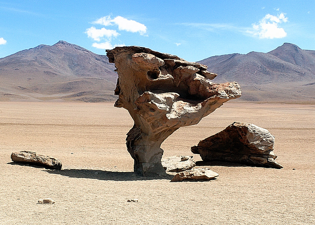 Arbol De Piedra Desierto De Siloli Bolivia 2007 Explore