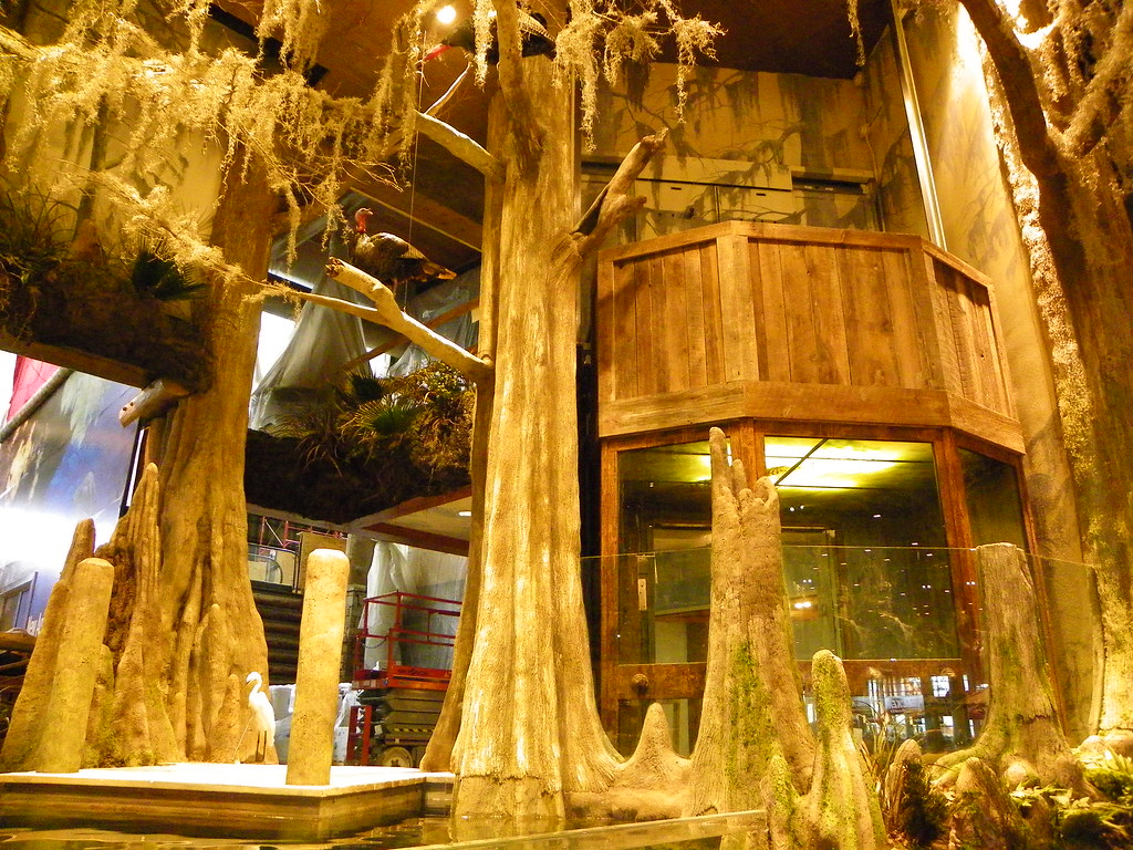 Bass Pro Shop - Springfield, MO | Elevator in Bass Pro Shops… | Flickr
