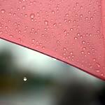 .. shine in the rain