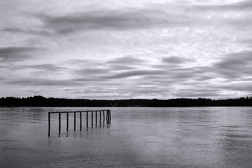 ocean trees sky blackandwhite cloud lake tree abandoned broken nature water monochrome clouds forest landscape lost coast pier still moody quiet dramatic wave forgotten vista lonely forsaken realism