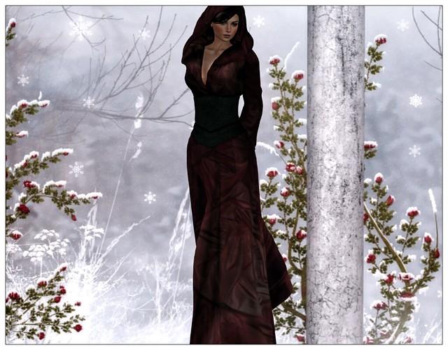 Midwinter Fair - Myrina Hooded Gown - EvelineInTheBox_01