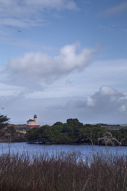 Bandon Light