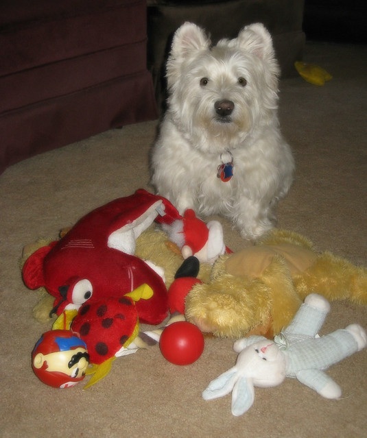 2/12B ~ Riley & Some of His Toys