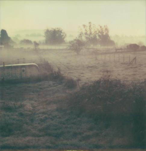 morning mist film field fog polaroid sx70 trailer sebastopol atz thelittledoglaughed expired0909