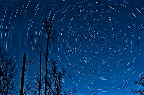 longexposure blue trees winter sky silhouette night dark georgia stars star nikon skies purple time nighttime constellations startrails polaris northstar chattooga startrail d90 thepocket 30minuteexposure chattahoochienationalforest