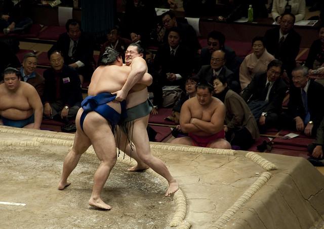 Sumo Fight!
