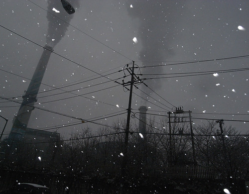 DanginriProject : snowy