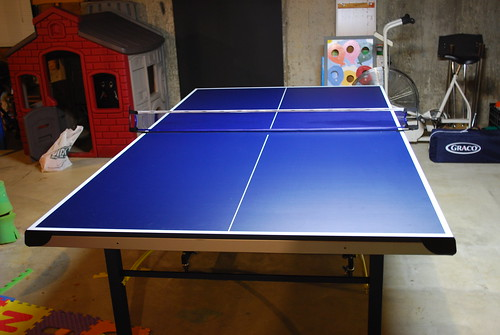 Ping Pong Table | by b0jangles