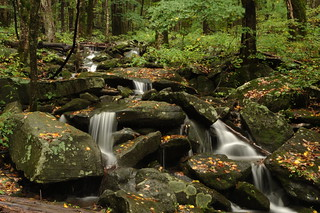 Great Smoky Mountains National Park | by cwwycoff1