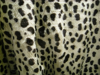 Spots on Synthetic Fur | by shaire productions