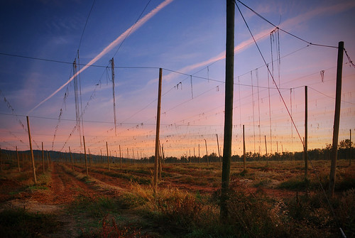 oregon sunrise hdr hops chris10eyck