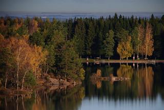 Surte Lake Autumn