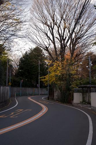 R0304619   by shio