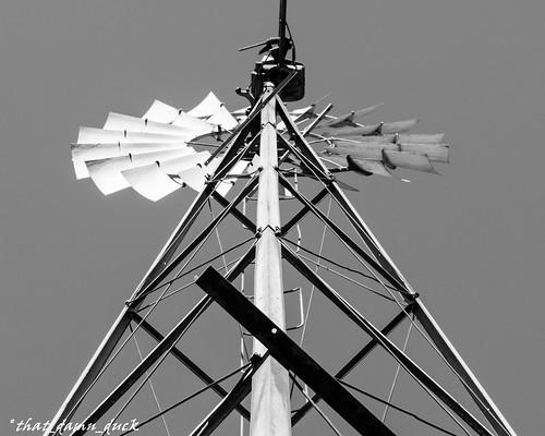 blackandwhite whiteandblack windmill outdoor pointofview bw blackwhite whiteblack nikon