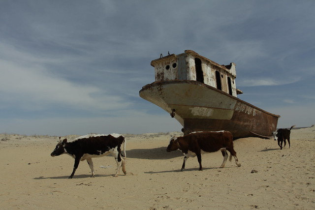 Shipwreck in Moynaq, formerly by the Aral Sea