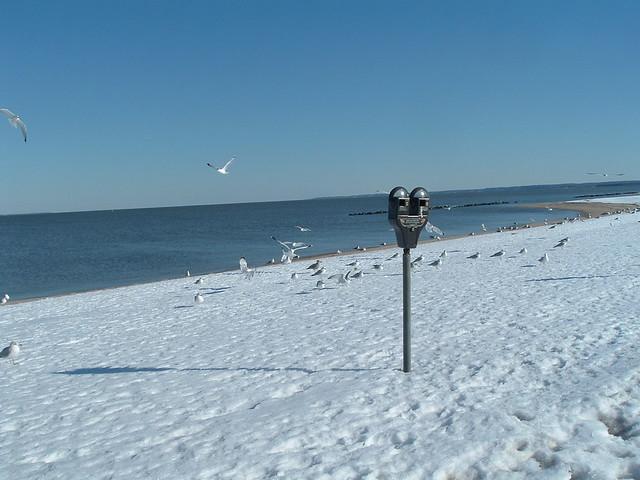 Colonial Beach Virginia, Feb-2010-Snow