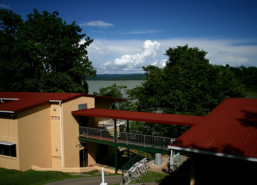 Tue, 10/07/2008 - 15:16 - Research station on Barro Colorado Island (Oct 2008). Credit: Markku Larjavaara.