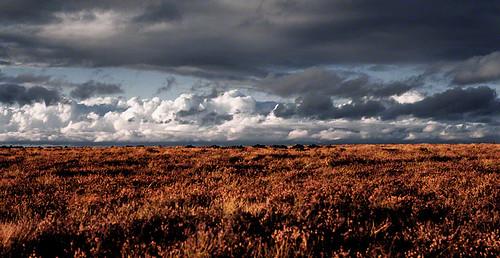 nikormat sky kildare landscape cokildare 2c 72dpipreview ireland best flickr hugh dempsey