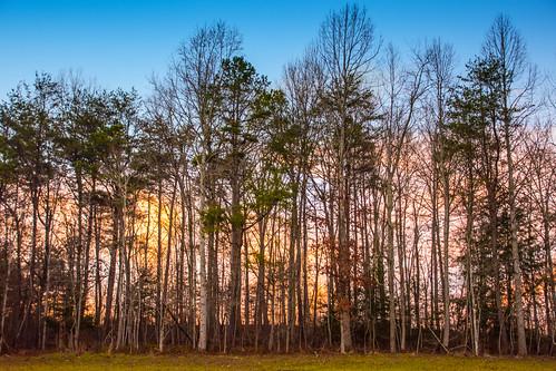 flatlickfalls sunset dusk woods
