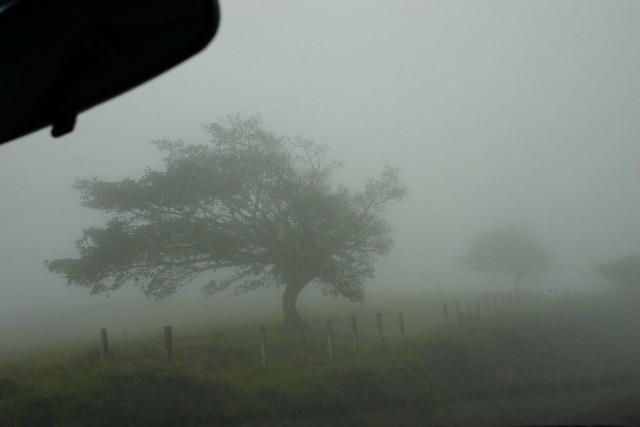 auf dem Weg von Arenal noch Monteverde