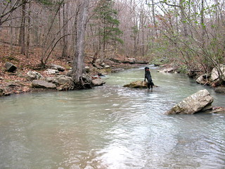 Spirits Creek   by OakleyOriginals