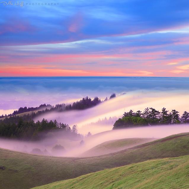 Mount Tamalpais Dreamscape