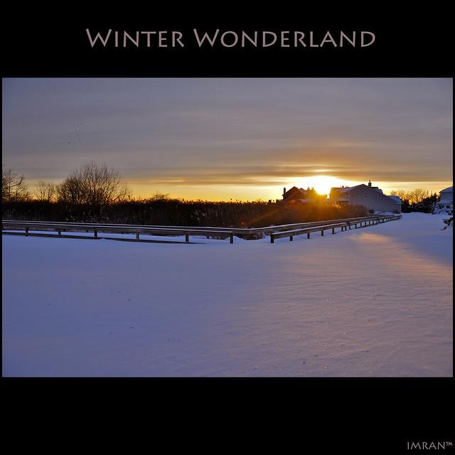 My Backyard + NY Blizzard = Winter Wonderland - IMRAN™ Stunning, snow filled landscape at Sunset. 18,000+ Views 430+ Comments 80+ Favorites!