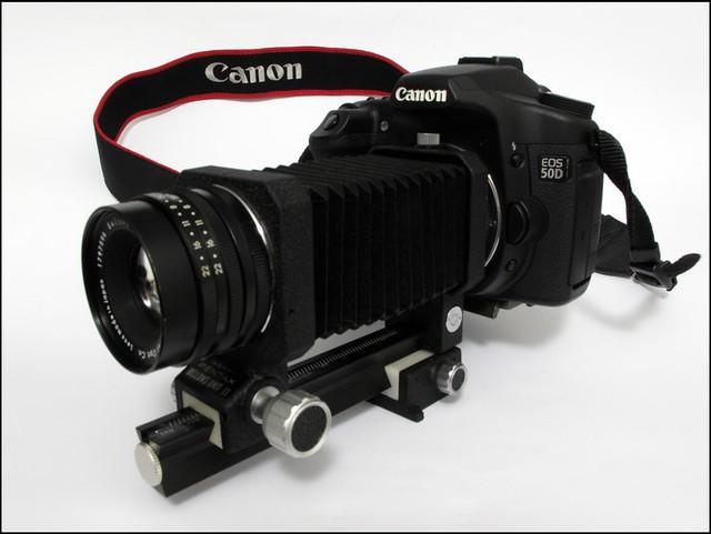 Canon 50D with Bellows-Takumar 100mm Macro | www jdvos com M