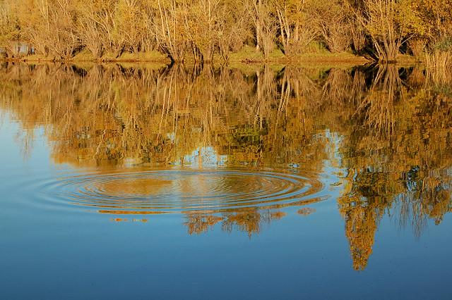 Lac de Sainte-Croix - Reflets avec ondes (Var)