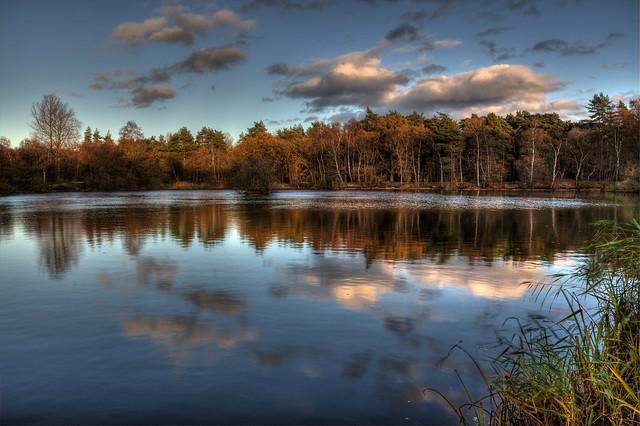 Bradmoor - Autumn Sunset
