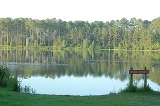Saturday Morning Warning, Laura S. Walker State Park, Waycross, Ga. (DS09) | by Rob Bellinger