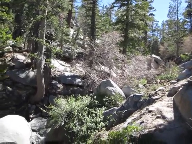 059_Sid-Davis-Drainage-stream