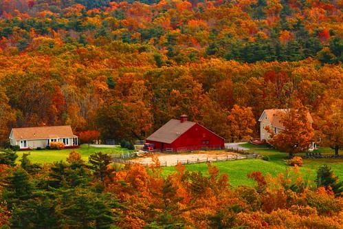 Autumn Colors | by Elliotphotos