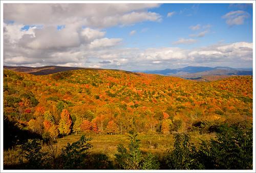 autumn color fall foliage sugarland graysonhighlandsstatepark