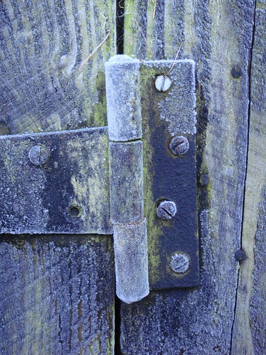 frosted hinge | by Norman Taylor