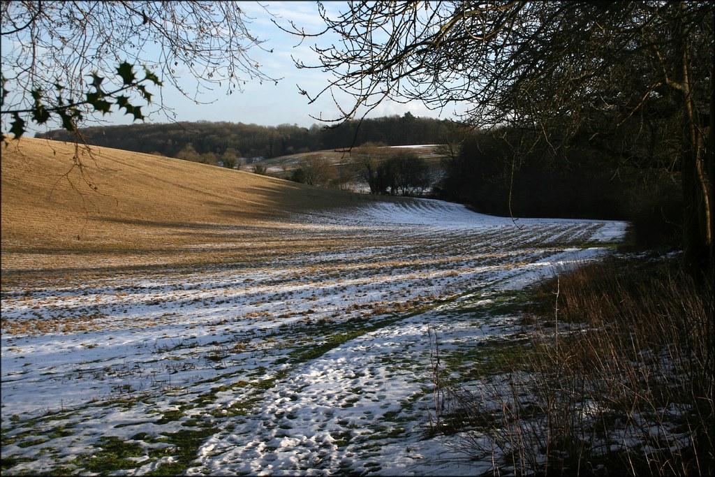 Near Binfield Heath
