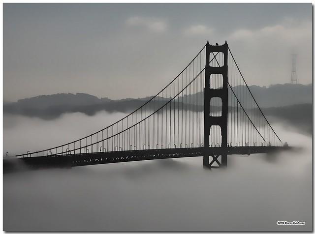 Velvet Fog  - Golden Gate Bridge