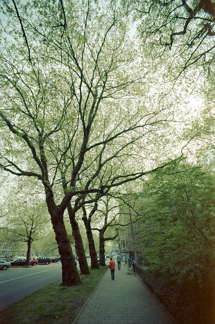 Amsterdam-longtimeagospringtime02