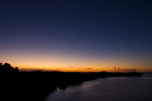 sunset coast nikon florida palmtrees coastline 365 aripeka d40