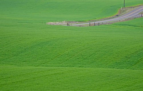 county trip green field grass bicycle oregon spring nikon ride hill may marion valley 緑 willamette 草 d7000 edmundgarman