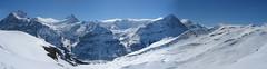 Wetterhorn, Schreckhorn a Eiger