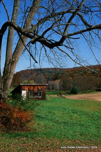 blue sky house tree green fall film grass 35mm landscape fuji pennsylvania slide velvia epson positive canonae1 50 fujichrome e6 rvp honesdale aldorafaelaltamirano rafaelaltamirano aldoraltamirano