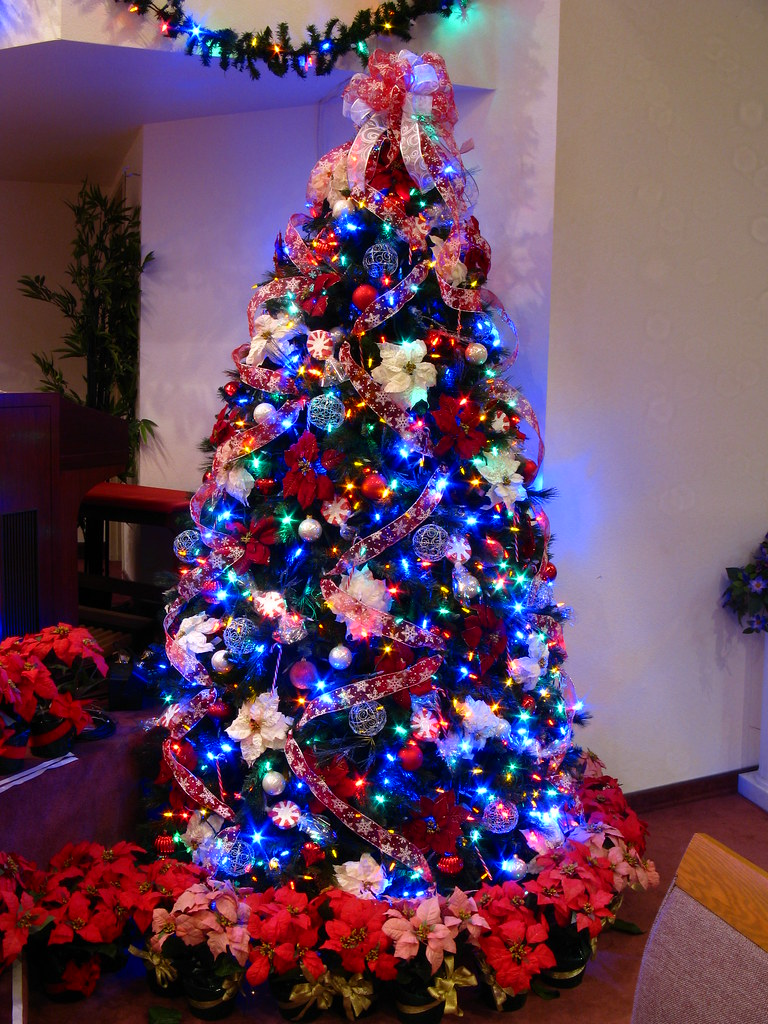 Candy Cane Christmas Tree.Candy Cane Christmas Tree With Multicolor Lights An Overal