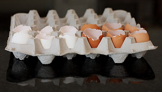 eggs1 | by Darby's Pictures