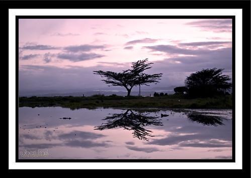 ocean sky sun art water clouds sunrise reflections pentax sunet humboldtcalifornia