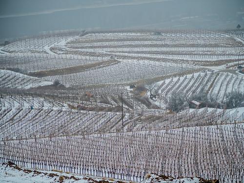 winterwinyard   by hans eder1