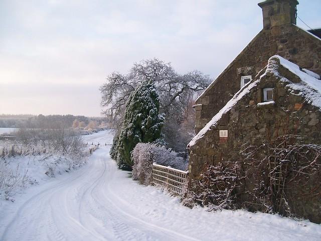 Cottage in December