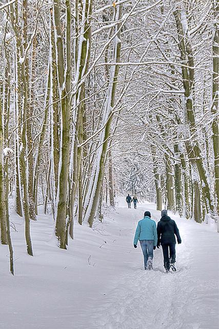 Kar Beyaz Yürüyüş