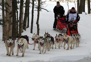 Karen Ramstead's team of Huskies near Goose Lake | by Alaskan Dude